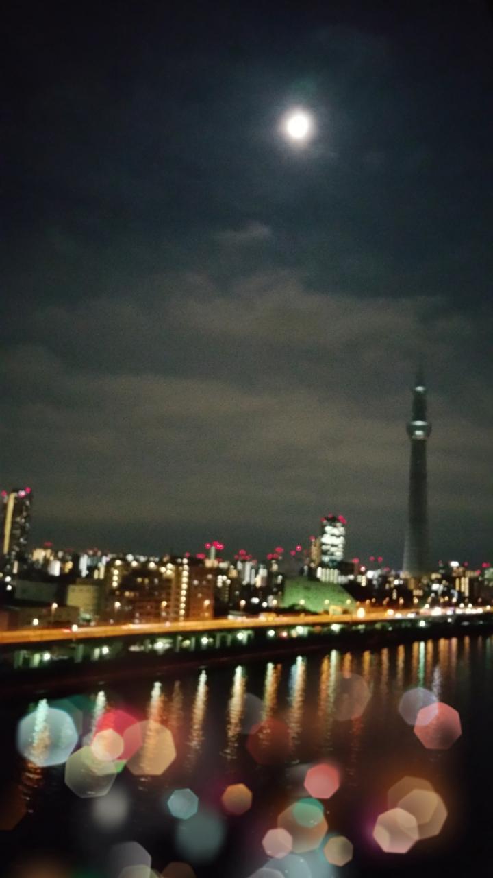 満月観れましたよ(^_-)