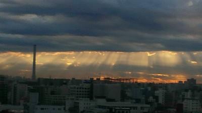 今朝の感謝の光